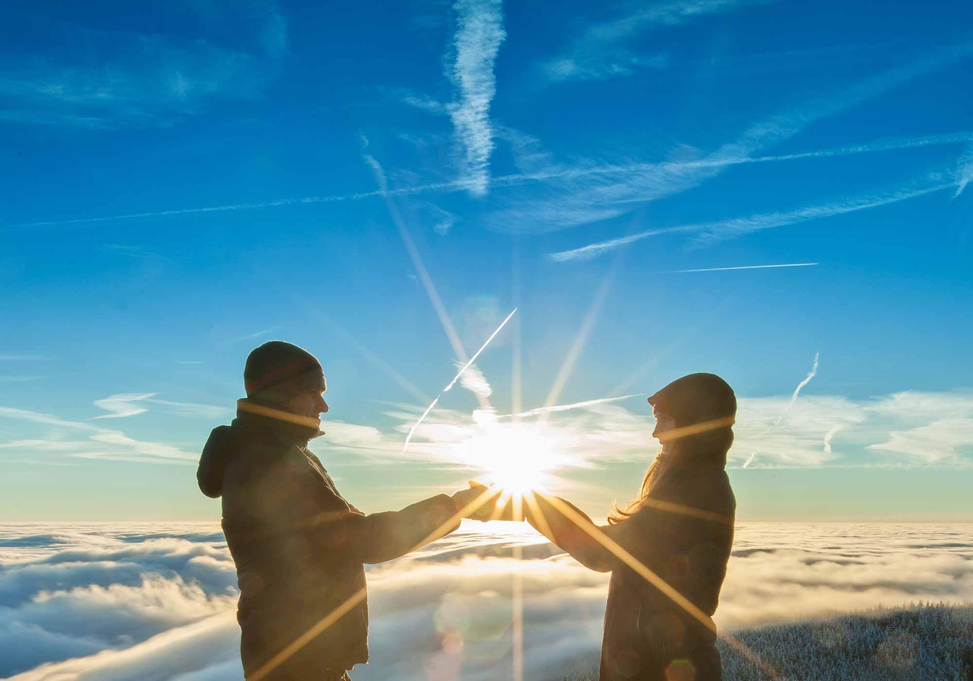 Dualis partnervermittlung
